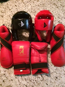 Martial Arts Sparring Equipment