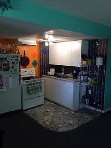 Frontenac mall area one bedroom basement