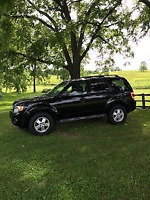 EXCELLENT USED SUV FOR SALE!