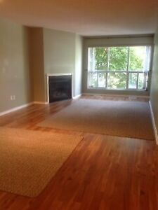 SPECTACULARLY CLEAN CONDO FOR RENT
