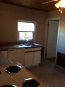 3 Bedroom Lower Flat Rental