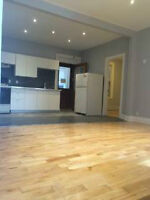 Renovated 4br Apt - heart of the Plateau (Coloniale/Prince Art)
