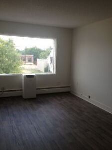 Newly renovated 1 bedroom for rent