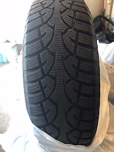 FORD F150 General Altimax Ice Radials on steel rims w/TPMS