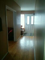 IMMED, 3 Bdr MF Very Clean Lrg Sunny Hse Wstmt w/ a Park,F's Mkt