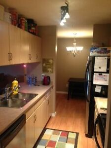 **ROOMMATE WANTED** Immaculate west-end condo!