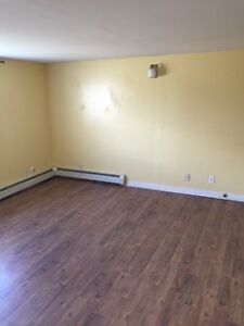 Large 1 bedroom apt on Canada Dr