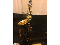 NEW - LADE WSS-896 Carve Pattern E Brass Alto Saxophone