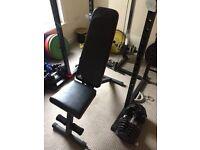 Weights bench & Preacher curl bench