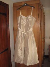 Silk Dress by Coast