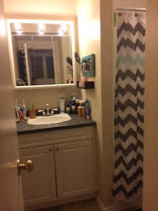 1 Large Bedroom available in a 2 Bedroom Condo Kingston Kingston Area image 6