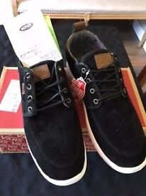 Vans Trainers ( New with receipt )