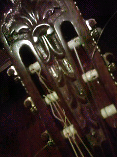 Di Giorgio - 1976 Signorina No.16 - Classical Acoustic Guitar