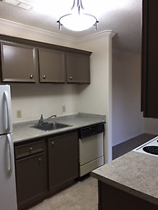River Trails/Lawson Mall - 2 Bed Plus 2 Parking Spaces!!