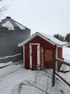Insulated barn, with electricity