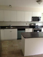 New 2 Bedroom, 2.5 Bath Townhouse for Rent