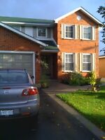 Gorgeous North End Fully Furnished Basement Apartment