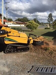 STUMP GRINDING GOLD COAST Surfers Paradise Gold Coast City Preview
