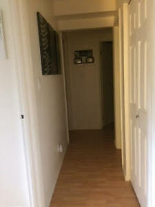 1 Large Bedroom available in a 2 Bedroom Condo Kingston Kingston Area image 8