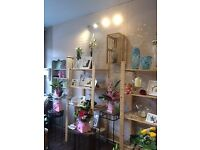 Florist business for sale. Established 20yrs