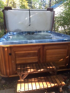 Arctic Spa Cub Hottub less than 2 years old