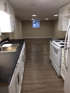 Beautiful Apartment for Rent July 1st. Fairview Mall area