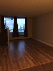 Nice apartments for rent in DOWNTOWN for only $1300