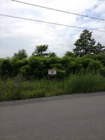 New Price! Large building lot in Ottawa with natural gas