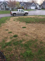 Is this your lawn