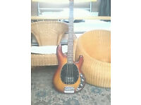 musicman sterling bass guitar
