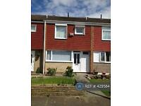 3 bedroom house in Hackness Walk, Middlesbrough, TS5 (3 bed)