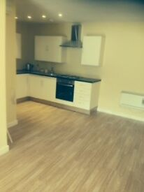 newely renovated one bed flat in high st Treherbert parking close to all amenities