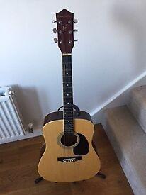 Earthfire Acoustic Guitar Steel Strings