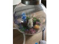 Medium size orb fish tank