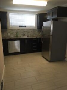 Furnished Fully Renovated 1 Bedroom Available Immediately