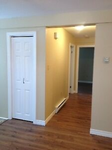 2 bedroom above ground basement apartment for  Rent
