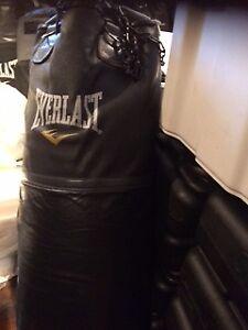 Everlast Punching Bags