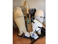 Cricket pads, bat and bag
