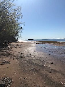 Waterfront land and wooded land available in Fox Harbour, NS