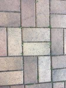 Free Pavers!! Bexley North Rockdale Area Preview