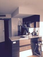 Downtown Furnished large Bachelor apartment for rent Sept -Dec