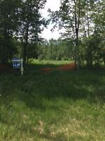 Breathtaking lot just minutes from the shores of Gull Lake.