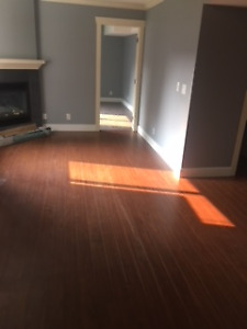 1br - Renovated, clean 1 bedroom for a professional