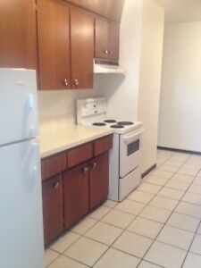 Sunny and Spacious 2 Bedroom Apartment Available July 1st