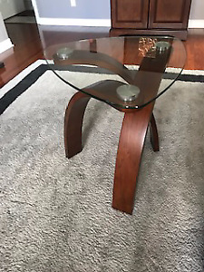 Glass Top Modern Coffee Table and Side Table Set