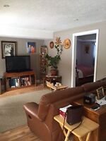 1 bedroom apartment in south end w/ separate entrance