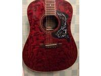washburn D/11/TR acoustic guitar