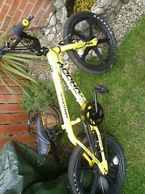 Big daddy bmx bike