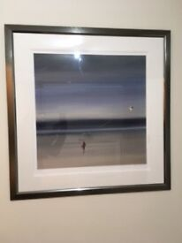 Framed Steve JOHNSTON, Limited Edition , Chasing the Wind, Signed Numbered