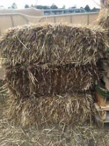 Hay Bails (Pick Up Only) Kariong Gosford Area Preview